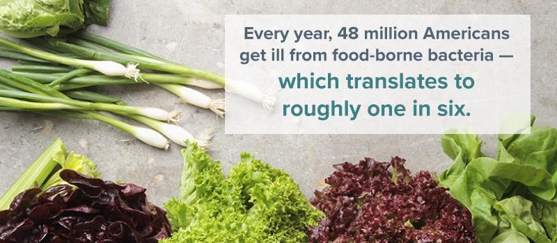 food-borne bacteria