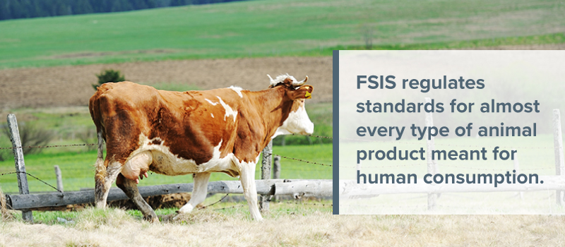 FSIS for animal product